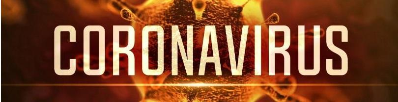 Identificare si detectie coronavirus nCoV